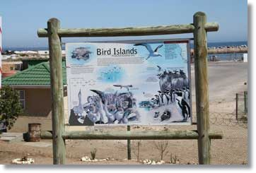 Bird Island in Lamberts Bay