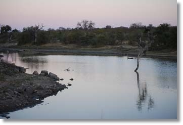 Kruger National Park Suedafrika Safari Lodges